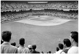 New York Ebbets Field Archival Photo Sports Poster Posters