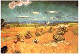 Vincent Van Gogh Wheat Stacks with Reaper Art Print Poster Prints