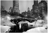 New York City Central Park in Snow 1953 Archival Photo Poster Photo