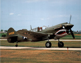 P-40 Warhawk (On Ground) Art Poster Print Photo