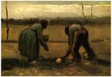 Vincent Van Gogh Peasant and Peasant Woman Planting Potatoes Art Print Poster Posters