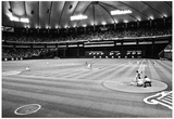 Minnesota Metrodome Archival Photo Sports Poster Posters