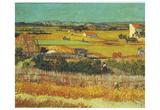 Vincent Van Gogh (Harvest at Arles) Art Poster Print Prints