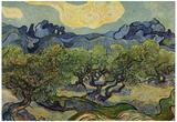 Vincent Van Gogh (Landscape with olive trees) Art Poster Print Plakát