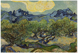 Vincent Van Gogh (Landscape with olive trees) Art Poster Print Poster