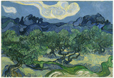 Vincent Van Gogh (The Olive Trees) Art Poster Print Poster