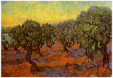 Vincent Van Gogh Olive Grove Orange Sky Art Print Poster Posters