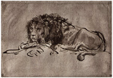 Rembrandt Harmensz. van Rijn (Dormant lion) Art Poster Print Posters