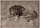 Rembrandt Harmensz. van Rijn (Dormant lion) Art Poster Print Posters