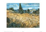 Vincent Van Gogh Le Champ De Bles Art Print Poster Prints