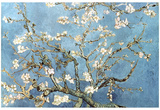 Vincent Van Gogh (Almond Branches in Bloom, San Remy) Art Poster Print Posters