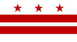 Washington DC Flag Poster Print Masterprint