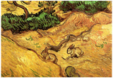 Vincent Van Gogh Field with Two Rabbits Art Print Poster Posters