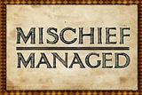 Mischief Managed Movie Print Poster Masterprint