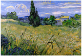 Vincent Van Gogh Green Wheat Field with Cypress Art Print Poster Póster
