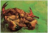 Vincent Van Gogh Crab on Its Back Art Print Poster Photo