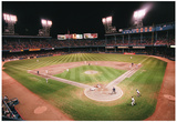 Tiger Stadium Detroit Tigers Archival Sports Photo Poster Print Print