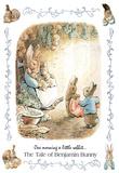 Beatrix Potter Benjamin Bunny Art Print Poster Posters