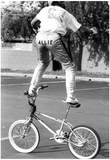BMX Allie 1987 Archival Photo Poster Posters