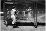 Ted Williams Batting Practice Fenway Park Archival Photo Sports Poster Print Prints