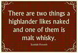 Scottish Proverb Things a Highlander Likes Naked Art Poster Print Posters