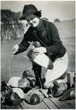 Duck Hunting Decoys 1938 Archival Photo Poster Print