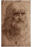 Leonardo Da Vinci (Self-Portrait) Art Poster Print Posters