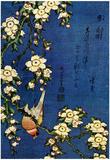 Katsushika Hokusai Bullfinch and Drooping Cherry Art Poster Print Posters