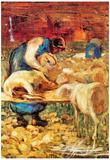 Giovanni Segantini Shearing Art Print Poster Posters