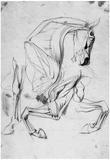 Franz von Stuck Horse Study Art Print Poster Print