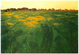 Felix Vallotton Field of Green Oats Art Print Poster Prints
