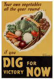 Dig for Victory WWII War Propaganda Art Print Poster Masterprint