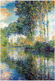 Claude Monet Poplars on the Epte Art Print Poster Prints
