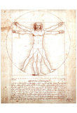 Leonardo Da Vinci DaVinci Study of Man Art Print POSTER Posters