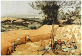 Pieter Bruegel The Grain Harvest Art Print Poster Prints