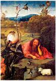 Hieronymus Bosch Meditator St John the Baptist Art Print Poster Posters