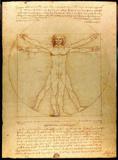 Leonardo Da Vinci (Vitruvian Man) Art Poster Print Masterprint