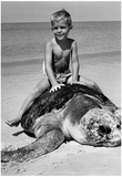 Boy on Giant Turtle Archival Photo Poster Prints