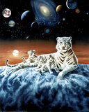 Celestial White Tigers Art Print POSTER space astronomy Masterprint