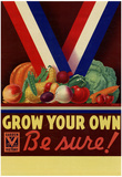 Grow Your Own Be Sure Safe Food WWII War Propaganda Art Print Poster Prints