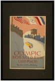 Lake Placid (Olympic Bobsled Run) Art Poster Print Photo