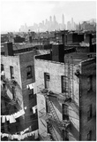 New York City Rooftops 1939 Archival Photo Poster Print Print