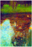 Gustav Klimt The Marsh Art Print Poster Photo