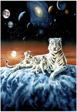 Celestial White Tigers Art Print POSTER space astronomy Reprodukcje