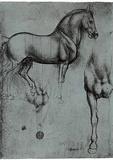 Leonardo da Vinci (Horse trials) Art Poster Print Masterprint