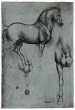 Leonardo da Vinci (Horse trials) Art Poster Print Poster