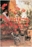 Childe Hassam Red Geraniums Art Print Poster Prints