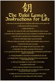 Dalai Lama (Instructions For Life) Art Poster Print Posters