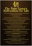 Dalai Lama (Instructions For Life) Art Poster Print Print