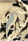 Katsushika Hokusai Two Cranes on a Pine Covered with Snow Art Poster Print Plakaty